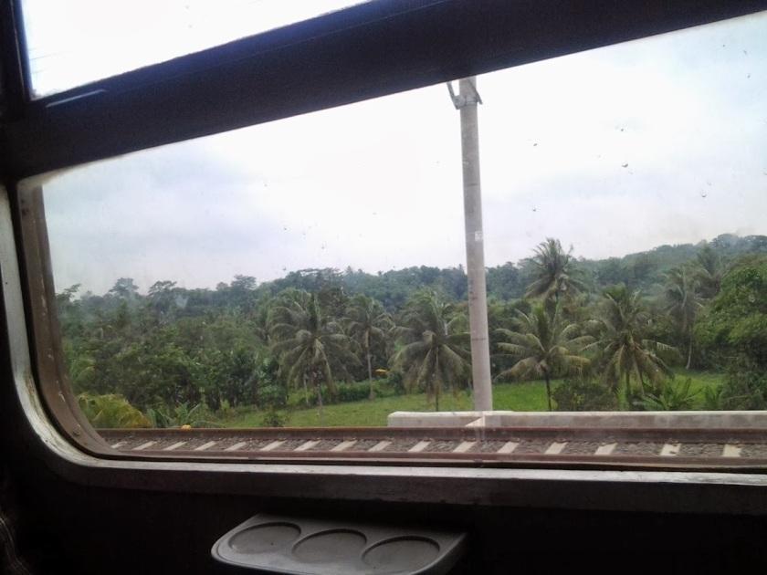 Pemandangan hijau sepanjang perjalanan